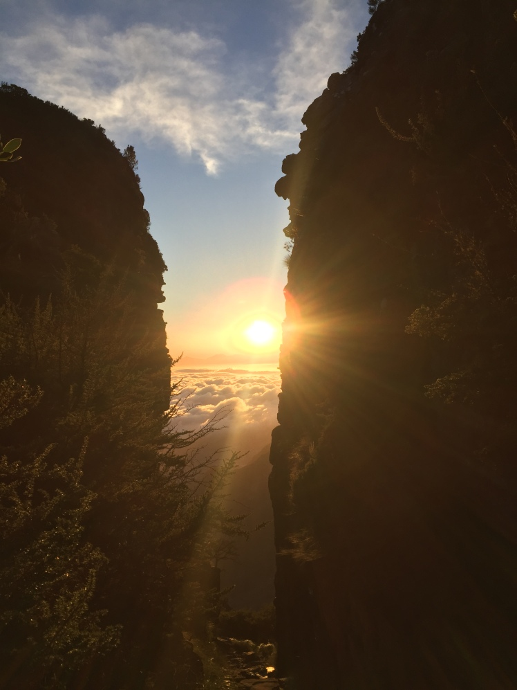 SUnrise between the cliffs at the top of Platteklip Gorge day 177 365 Ubuntu Climbs